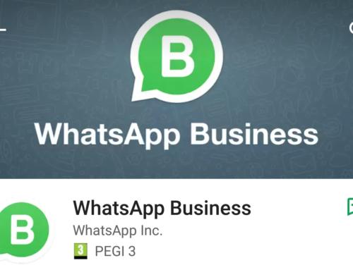 E' arrivato WhatsApp Business, uno strumento utile per l'azienda che comunica